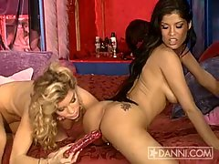 Alexis Amore and her Big Tits get toys slammed in her tight hole