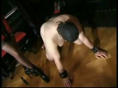 Domina Session 2