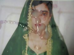 Gman Cum on face of a Sexy Indian Girl in Sari (tribute)